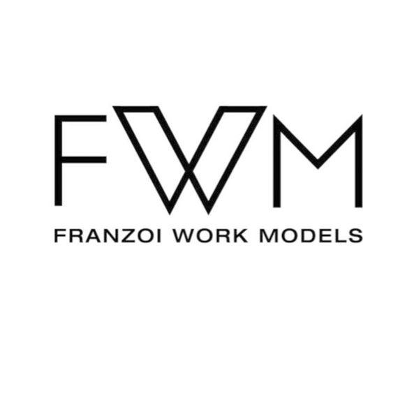 FWM - Franzoi Work Models